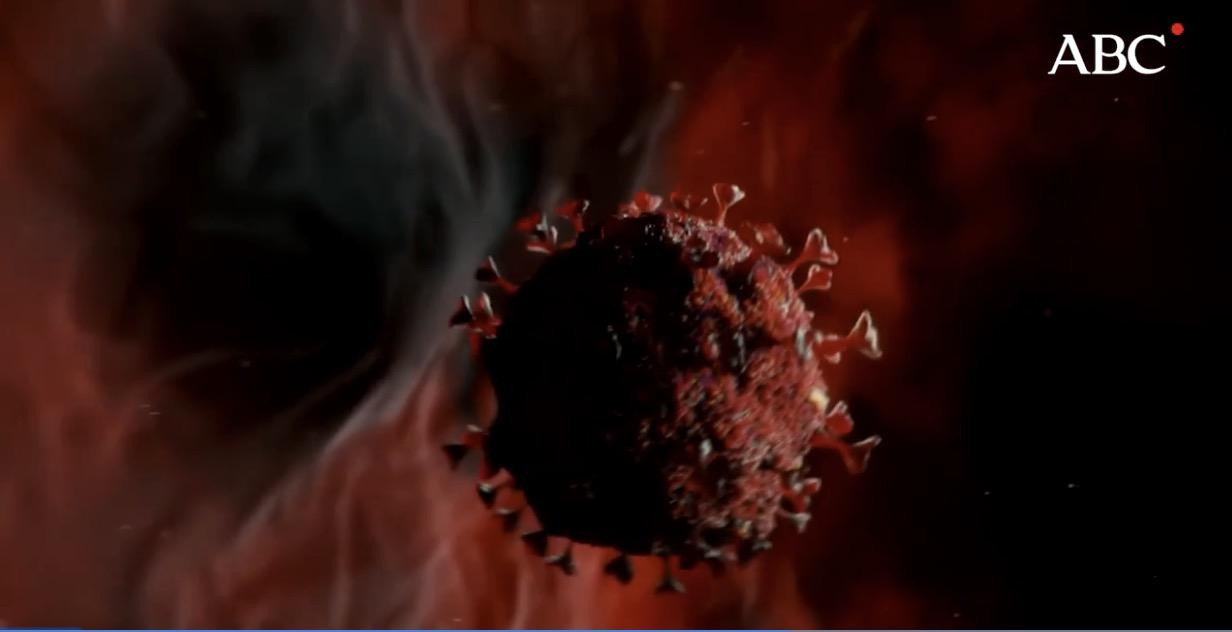 Hallan el «talón de Aquiles» del coronavirus SARS-CoV-2